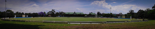 Bankstown Oval Panorama