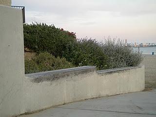 DSCN5691