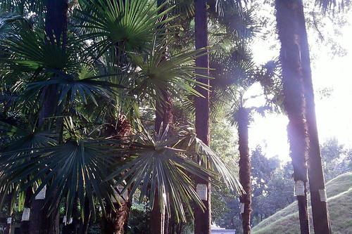 Guangqi Park