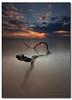 For JustJayne (danishpm) Tags: longexposure seascape beach clouds sunrise australia wideangle driftwood le nsw aussie aus 1020mm sunrays seamonster manfrotto sigmalens cabarita northernnsw sorenmartensen tweedarea hitechgradfilters 09ndreversegradfilter