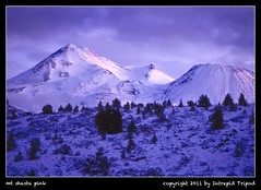 mt shasta pink (Intrepid Tripod) Tags: california pink winter mountain snow storm cold 35mm evening weed snowstorm roadtrip kodachrome 1977 mtshasta alpenglow lastlight tirechains january4 ushighway97 vanagram scannedfromtransparency wiobw