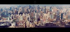 混凝之城 /  Reinforced Concrete (blackstation) Tags: 陆家嘴 建筑 jinmaotower 金茂 金茂大厦 swfc 环球金融中心 shanghaiworldfinancialcenter blinkagain