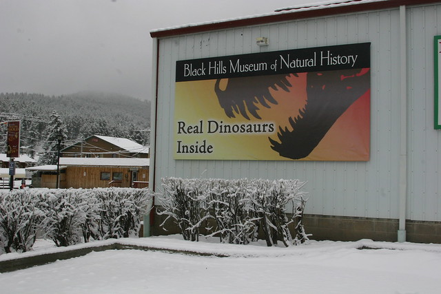 Black Hills Institute Outside Facade