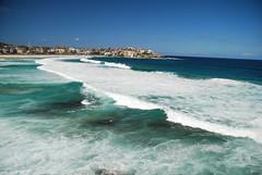 DSC_3676 (J.D Chen ) Tags: trip travel blue sea vacation sculpture holiday beach bondi by nikon tour au working sydney australia nsw newsouthwales sculpturebythesea bondibeach   backpackers whv d80  workingholidayvisa