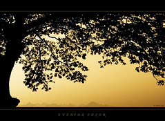 Evening color (Rhivu_Ray) Tags: sunset india art silhouette canon eos asia sigma 7d bengal bangla patuli rhivu rhitamvarray rhivuphotography