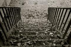 stones in your path* (Einfach-Nur-Ich) Tags: stairs path stones treppe steine weg