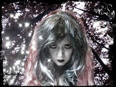Hallowe'en 2011 material