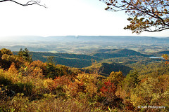 Shenandoah National Park, Skyline Drive (BAR Photography) Tags: autumnfoliage autumnleaves autumncolors photoaday pictureoftheday shenandoahvalley blueridgemountains autumntrees shenandoahriver autumnflowers pictureaday skylinedrive photooftheday oldragmountain shenandoahnationalpark autumnleaf abstractphotos peakcolors octoberphotos peakseason barphotography hazelmountainoverlook shenandoahmountains autumnweather dayphoto skylinedrivevirginia skylineviews shenandoahnationalparkskylinedrive oldragoverlook overlook3 mountainoverlooks shenandoahrivervalley perceptionphotos 2011photography nopointoverlook jewelhollowoverlook fallpeakseason skylinedrivemountains shenandoahvalleys