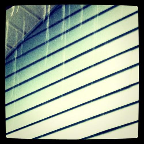 Rain by springknitter