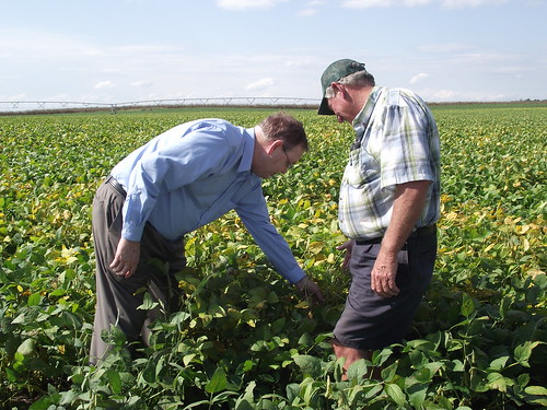 Under Secretary Tonsager and Worton farmer Frank Dill inspect a field of soybeans grown with the assistance of the County's spray irrigation system.