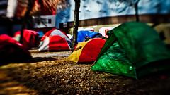 #occupyedmonton