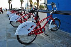 bicing in barceloneta (chrisshots) Tags: barcelona street blue red sea sun yellow photoshop palms spain nikon bikes bicycles espana barceloneta 2086 chrisshots d3000 bicing bicivisme