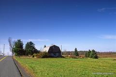 Farm (Rafakoy)