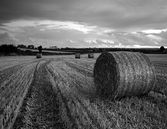 Straw bales B&W (DaveMurdoch... time to catch up!!) Tags: bw field ni strawbales codown comber canon40d hitechfilters