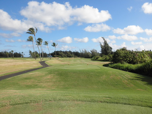 Turtle Bay Colf Course 098
