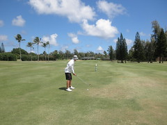 Turtle Bay Colf Course 214