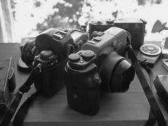 Nikon F100 & Fuji GA645Zi (Pablo Maturana) Tags: 645 fuji fujifilm hotmama cameraporn ga645zi