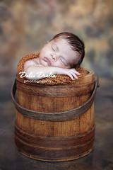 Nyc newborn photographer (Dalia Drulia) Tags: kids children bucket babies newborn sleepingbaby sigma50mm inafant druliaphotography canon5dmark2 queensnewbornphotographer nynewbornphotographer newbornphotographynyc druliaphoto newbornny