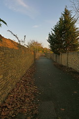 The long way home (Afgil) Tags: autumn light fall luz evening licht path lumière caminhos lux middlesex luce brentford eveninglight syon lumen свет φωσ theinspirationgroup