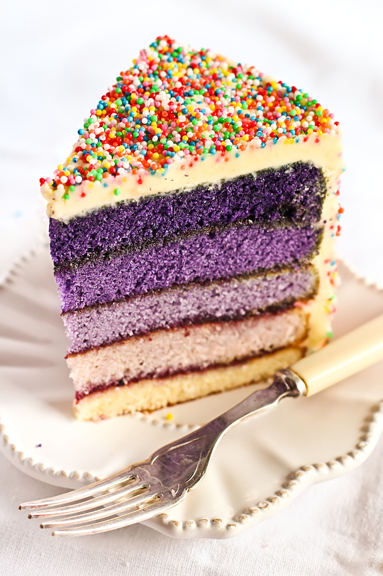 purple_ombre_sprinkle_cake-4