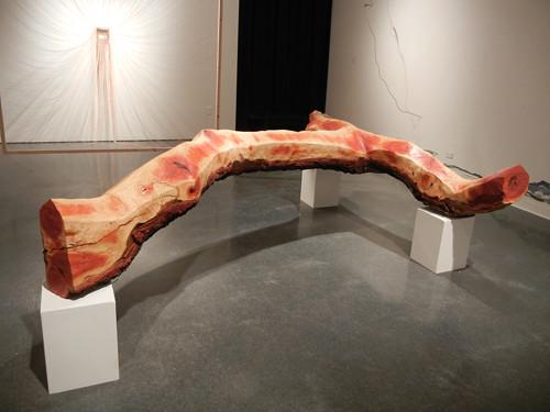 Worth Ryder Gallery, University of California, Berkeley _ 7890