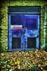 (jordi.martorell) Tags: door leaves geotagged hojas puerta victoriapark porta guessed guesswherelondon towerhamlets boilerhouse gwl fulles guessedbyanya123