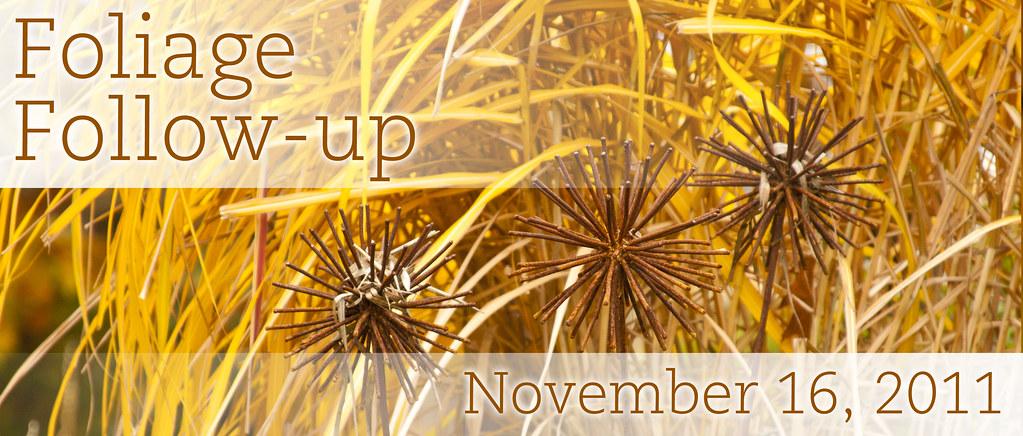 FFU_November 2011