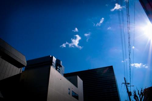 2011-11-15の空
