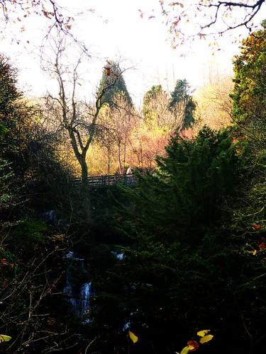 Autumn Scene at Rouken Glen
