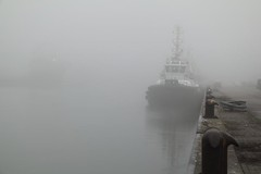 Fog (Explore) (Machiel Taal) Tags: sea harbour nederland soe autofocus wow1 wow2 wow3 wow4 greatphotographers wow5 flickraward platinumheartaward simplysuperb doubleniceshot tripleniceshot mygearandme mygearandmepremium mygearandmebronze ringexcellence greaterphotographers dblringexcellence tplringexcellence galleryoffantasticshots flickrstruereflection1 flickrstruereflection2 flickrstruereflection3 flickrstruereflection4 flickrstruereflection5 flickrstruereflection6 flickrstruereflection7 flickrstruereflectionexcellence rememberthatmomentlevel1 rememberthatmomentlevel2 rememberthatmomentlevel3 me2youphotographylevel1