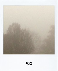 """#Dailypolaroid of 20-11-11 #fb #52 • <a style=""""font-size:0.8em;"""" href=""""http://www.flickr.com/photos/47939785@N05/6390912571/"""" target=""""_blank"""">View on Flickr</a>"""