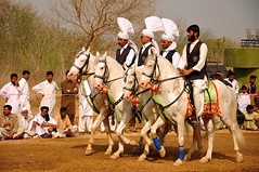 Horsemen (Asif Saeed [....DOCUMENTING PAKISTAN...]) Tags: carnival horse festival asif actionshots horseriding islamabad sportsphotography tentpegging ancientsports localsport
