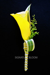 Cupertino Special Event Flowers, Yellow Calla Lily Boutonniere (Signature Bloom) Tags: california ca flowers wedding flower floral yellow for photo sunnyvale photos events sanjose event cupertino weddings bridal callalily ideas weddingflowers floraldesign cupertinoca boutonniere specialevents weddingideas bridalflowers cupertinocalifornia 95014 floraldesigner flowerdesign weddingflorist eventflowers weddingfloral specialeventflowers flowersforwedding signaturebloom wwwsignaturebloomcom bridalflorist cupertinospecialeventflowers specialeventflowerscupertino wwwfacebookcomsignaturebloom