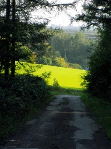 新緑の丘2~就実