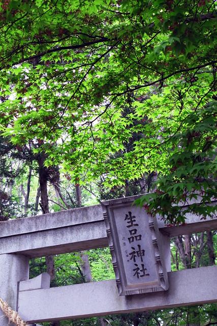 110503_115710_太田_生品神社