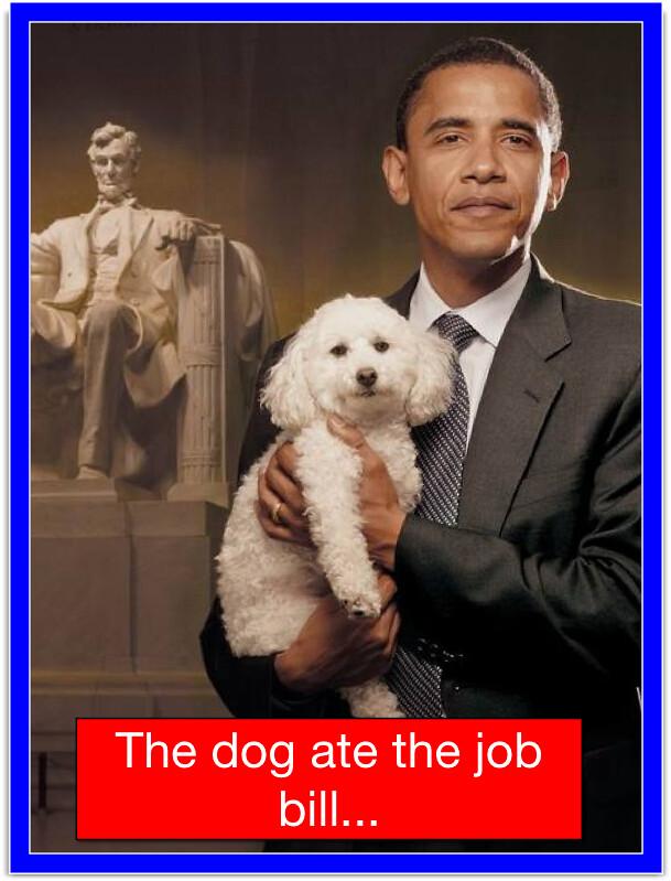 THE DOG...