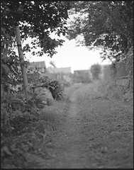 0492 (nori 4_4) Tags: blackandwhite bw film monochrome japan kodak trix d76 13 kanagawa analogphotography pentax6x7 道 selfdevelopment