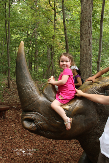 NC Zoo #37