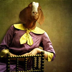 The good advisor (Martine Roch) Tags: portrait cute animal lady digital funny surreal goat attitude advice conversation surrealist thecharacters flypapertextures