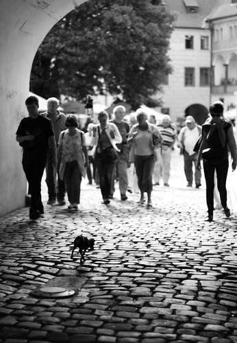 Walk in Prague -23