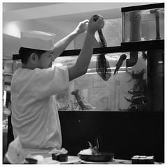 (It's Stefan) Tags: blackandwhite bw food fish net cooking monochrome japan sepia sushi cuisine aquarium restaurant tokyo fishing rice cook fresh squid chef stuff lobster seafood küche cuttlefish hummer calamari kochen calamaris cuttle ©stefanhöchst