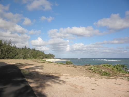 Turtle Bay Colf Course 074