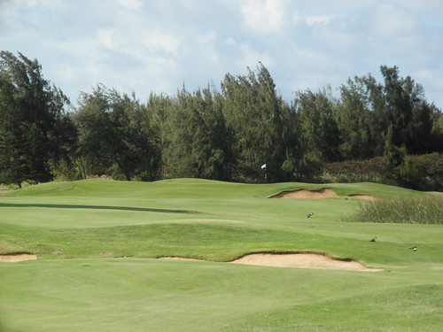 Turtle Bay Colf Course 313