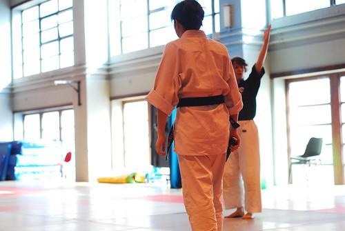 6299419741 bff67e48b6 London & Hove Shodokan Aikido Festival 2011