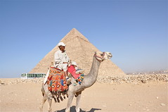 A Traveller's Scene from the Pyramids (The Spirit of the World) Tags: man bus pyramid egypt cairo camel local 1001nights giza wow1 thepyramids 1001nightsmagiccity mygearandme flickrtravelaward