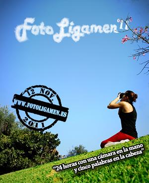 Cartel Fotoligamen 2011