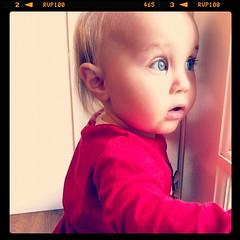 Stella, 11 months