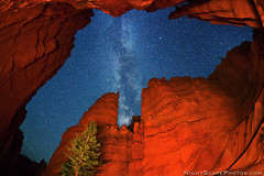 "Starry night canopy over Bryce Canyon (IronRodArt - Royce Bair (""Star Shooter"")) Tags: park street light sky lightpainting nature wall night dark painting way stars evening twilight shiny long exposure heaven glow shine nightscape time dusk infinity space deep twinkle canyon astro sparkle galaxy national astrophotography planet bryce astronomy wallstreet brycecanyon universe exploration milky narrow cosmic starry cosmos constellation steep distant milkyway starlight brycecanyonnationalpark navajoloop starrynightsky"
