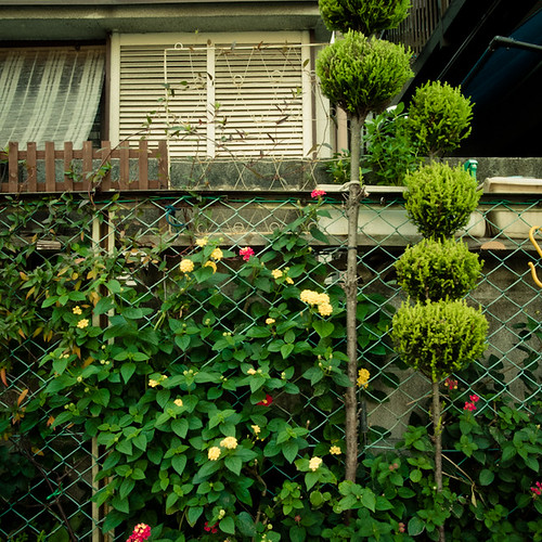 Skewered Tree Fence Garden, Minamikasai, Tokyo, Japan