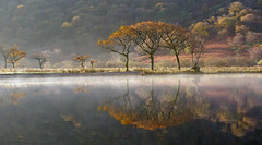 Crummock Water reflection Explored #6 (fellsiders) Tags: autumn trees reflection fall water lakes lakedistrict crummockwater explore6 panasonicfz45 mrsfellsider explorenov16th2011